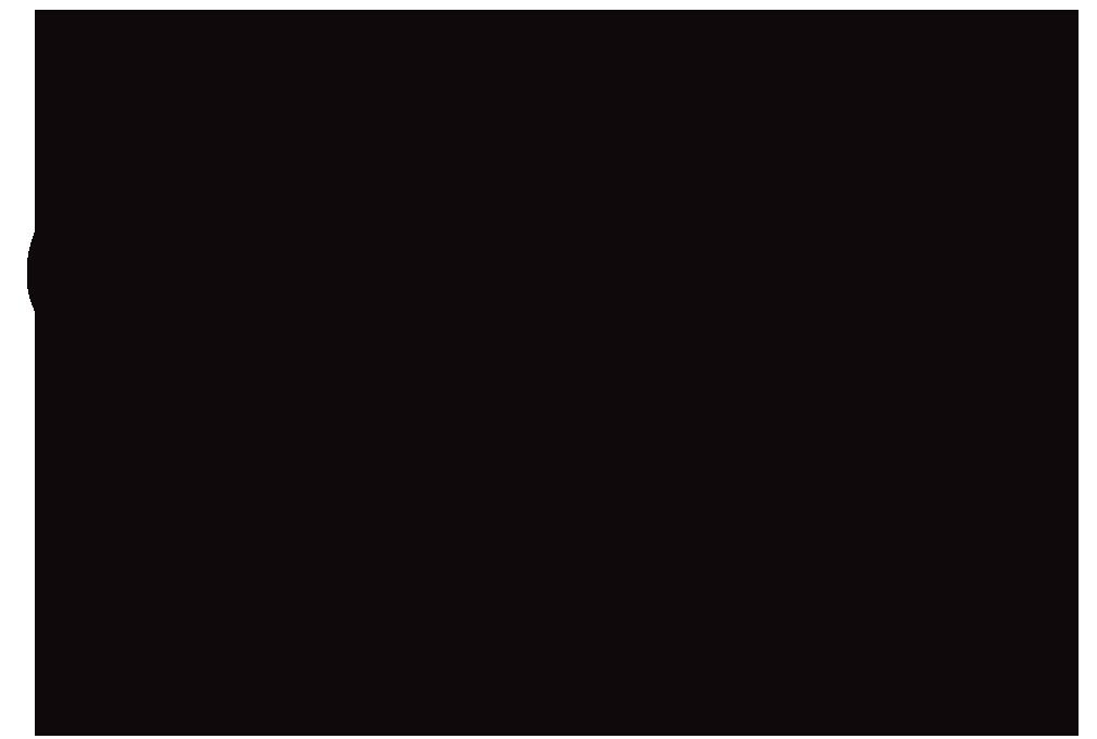 french-twist-black