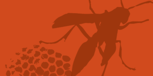 line illustration of a wasp and nest - dark brown on orange background
